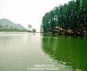 Sembuwatte Lake, Sri Lanka from sri lanka